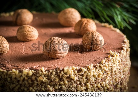 Walnut cake filled with nuts - stock photo
