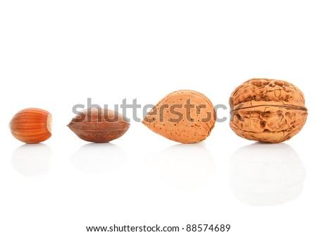 Walnut, hazelnut, almond and pecan nut isolated on white background. Nuts assortment. - stock photo