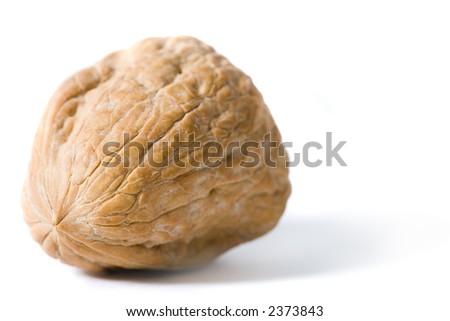 Walnut, isolated on white, angled - stock photo