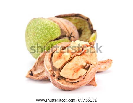 Walnut nut closeup on white background - stock photo