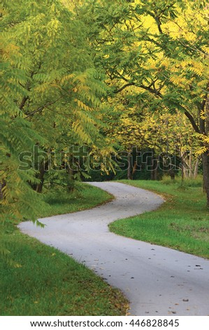 Walnut Trees In Autumnal Park, Large Detailed Vertical Landscaped Autumn Path Scene Twisting Tarmac Walkway Winding Asphalt Road Zigzag Perspective Walnuts Parkland Pavement Fall Solitude Concept Lawn - stock photo