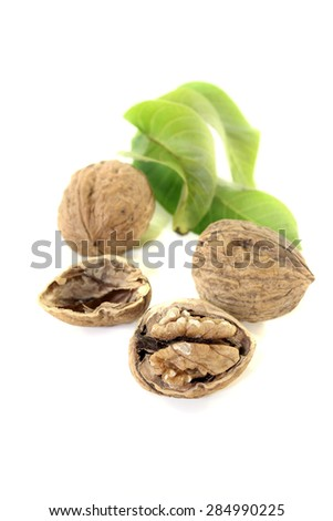 Walnut with walnut leaves on a bright background - stock photo