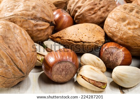 walnuts, almonds, hazelnut and pistachios, selective focus - stock photo