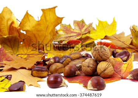 Walnuts and autumn leaves suitable for background