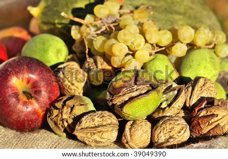 Walnuts and other fruits. - stock photo