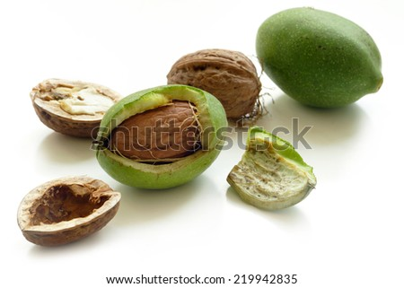 walnuts, fresh and green from the tree, some are open, isolated on white background