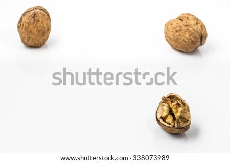 Walnuts on a white background.