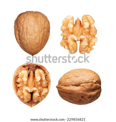 Walnuts set isolated on white - stock photo
