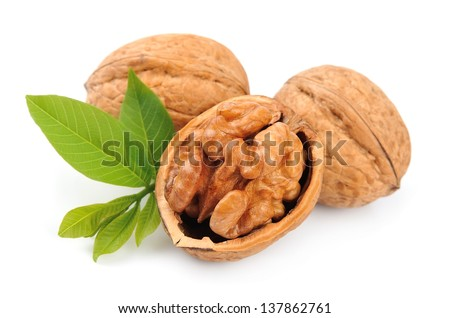 walnuts with leafs  isolated on white - stock photo