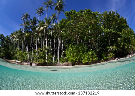 Warm, clear seawater bathes a beautiful beach in Raja Ampat, Indonesia.  This region is known for its high marine biological diversity. - stock photo