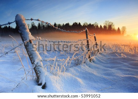 Warm cold winter sunset, last rays of setting sun coloring the fog golden in this winter sunset viewed in Estonia - stock photo