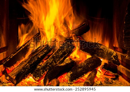 warm fireplace with lots of trees ready for barbecue - stock photo