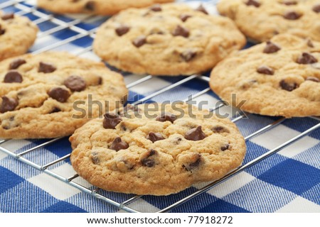 Warm, golden brown, chocolate chip cookies cooling on a rack.  Shallow depth of field.