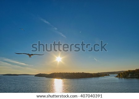 Warm sunset with Sea Gull at one side - stock photo