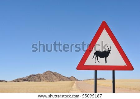 Warning gazelle! - stock photo