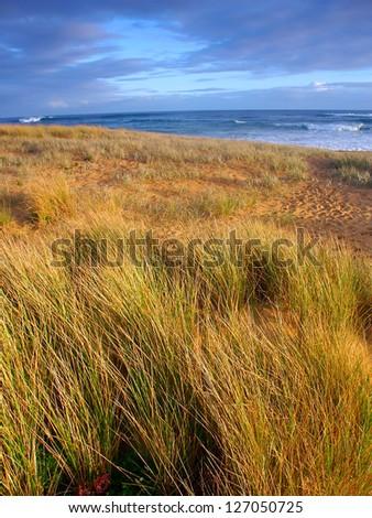 Warrnambool Beach in Australia - stock photo