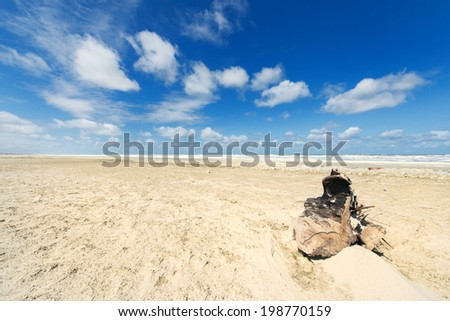 washed piece of wood at the beach of Dutch wadden island Terschelling - stock photo