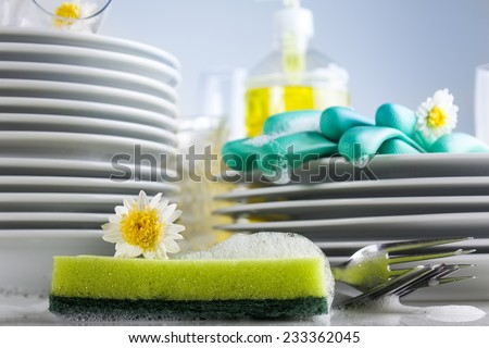 Washing glasses and plates with detergent and fresh flowers - stock photo