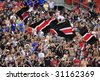 WASHINGTON, DC - MAY 13:  DC United supporters celebrate a goal during a Major League Soccer match against the Kansas City Wizards at RFK Stadium in Washington, DC May 13, 2006. - stock photo