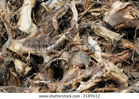 Waste wood parts on a lumbering site - stock photo
