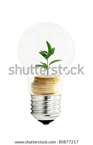 Wasting money concept isolated on white - stock photo