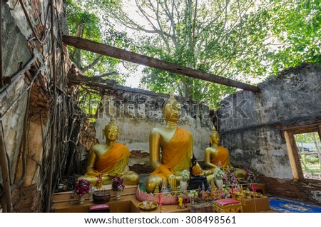 Wat Sang Kratai is 400 years old temple. It is deserted temple in Ang Thong Province, Thailand.
