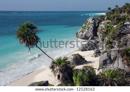 Watching the sandy beach from a high view. Tulum. Yucatan. Mexico