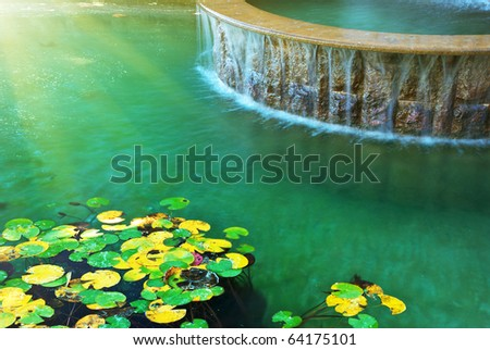 Water and leafs from water lily. Nature design. - stock photo