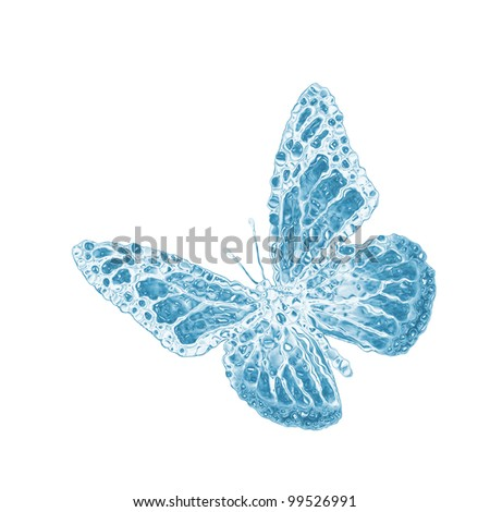 water butterfly isolated on white