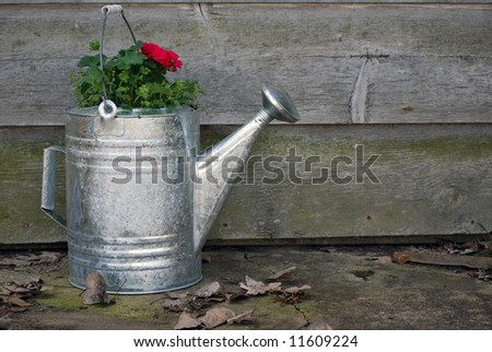 water can with plant