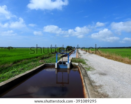Water canal and water gate for paddy rice field irrigation with blue skies.  - stock photo