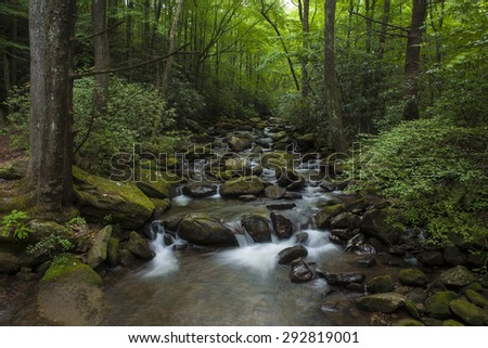 Water cascading over rocks in lush forest in South Carolina - stock photo