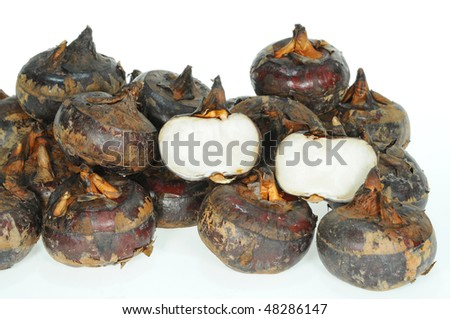 Water Chestnuts Isolation - stock photo