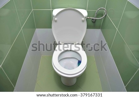 Water closet tiled by fresh green material - stock photo