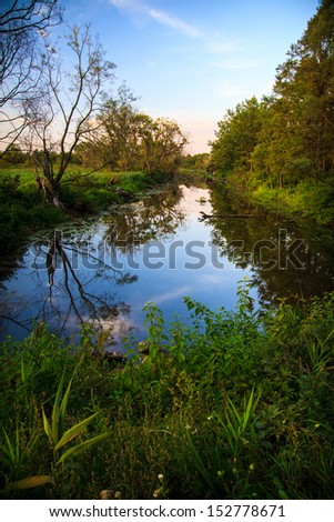 Water ditch in Biebrza national reserve - stock photo