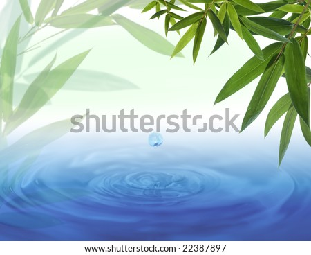 Water drop falling from a bamboo leaf - stock photo