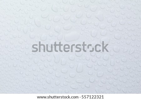 water droplets on white background
