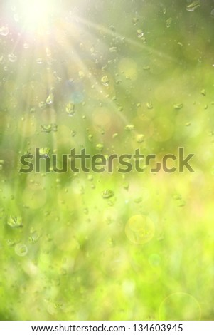 Water drops on glass window. - stock photo