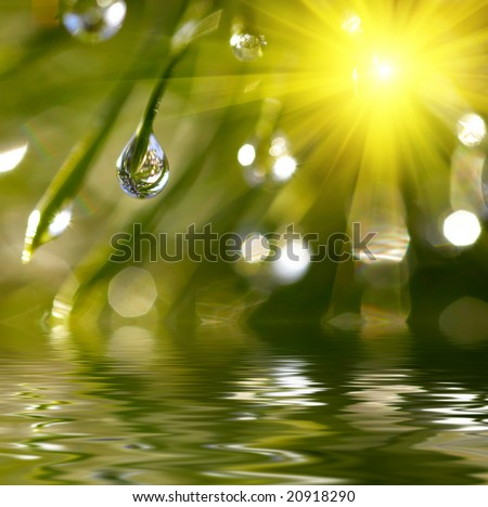 Water drops reflected in the water - stock photo