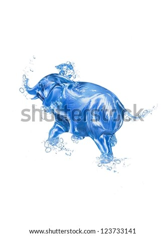 Water Elephant - stock photo