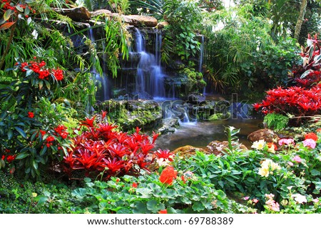 Water fall in garden