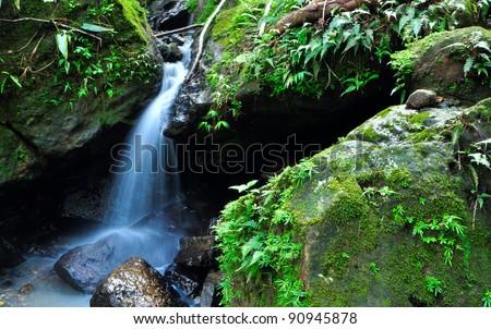 water falls El Yunque rain forest in Puerto Rico - stock photo