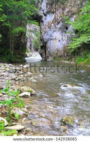 Water flowing through limestone gorge, Romania - stock photo