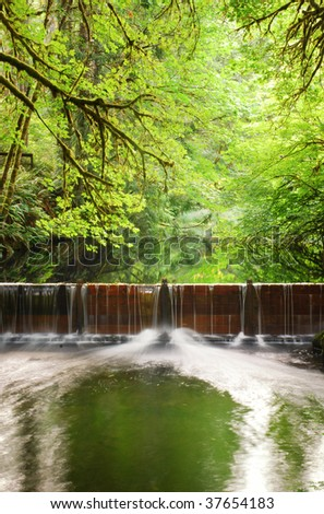 Water flows over a temporary salmon run dam after recent rainfall