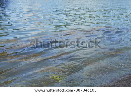 water in an urban canal with aquatic plants and small waves with reflections of the sky on a sunny summer day