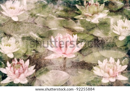 Water Lily on grunge textured canvas - stock photo