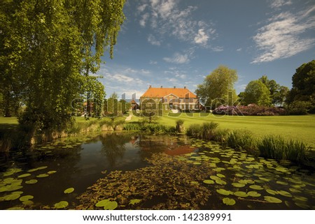 Water lily pond in the park - stock photo