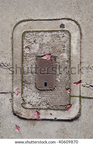 Water meter cover and concrete sidewalk with fall leaves in downtown Grants Pass OR