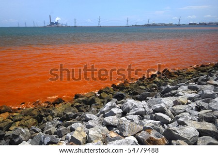 air and water pollution the gulf oil spill essay We need your help by giving us your insights from oil spill air pollution study have p-3 flights over the deepwater horizon oil spill in the gulf.