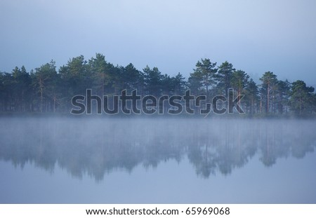 water reflecting woods on cold day - stock photo